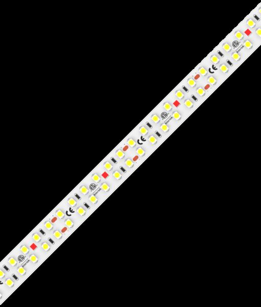 beam-double